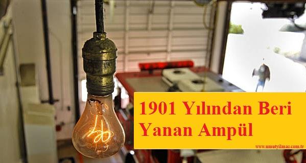 1901 Yılından Beri Yanan Ampül